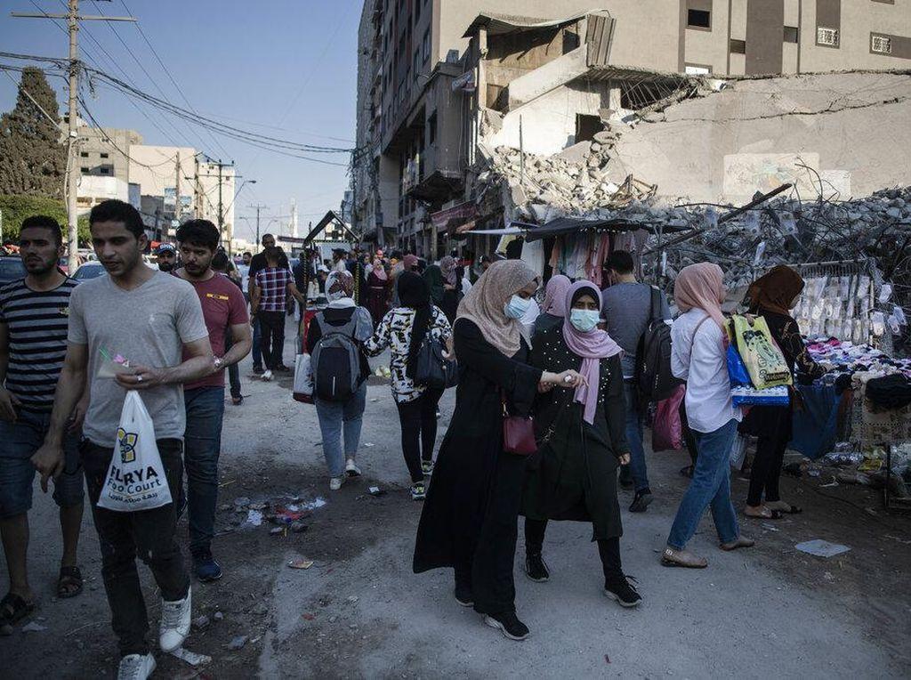 Petani Palestina Lesu, Hasil Panen Zaitun di Palestina Turun Drastis