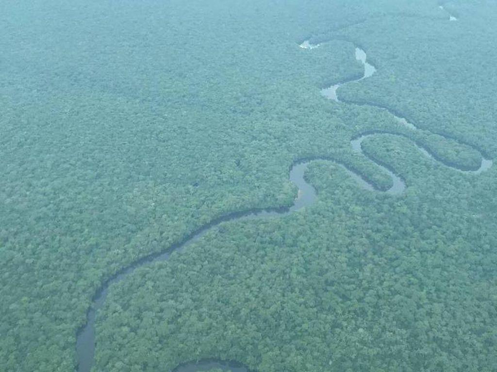 Hutan Hujan Lindung Terbesar Afrika Dihapus dari daftar Warisan Dunia dalam Bahaya