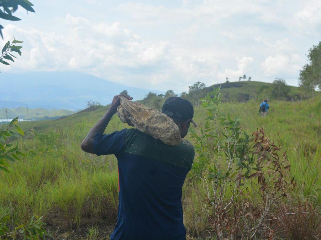 Fosil Kayu, Bahan Baku Terbaik Batu Akik dari Papua
