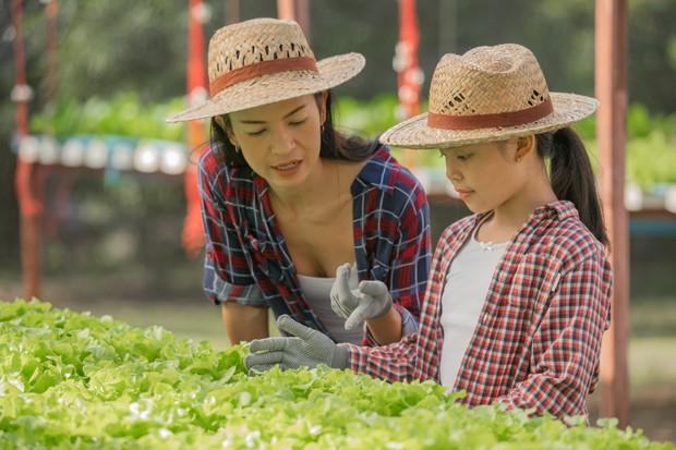 Kegiiatan selama PPKM yang bisa kamu lakukan bersama si kecil yakni dengan berkebun