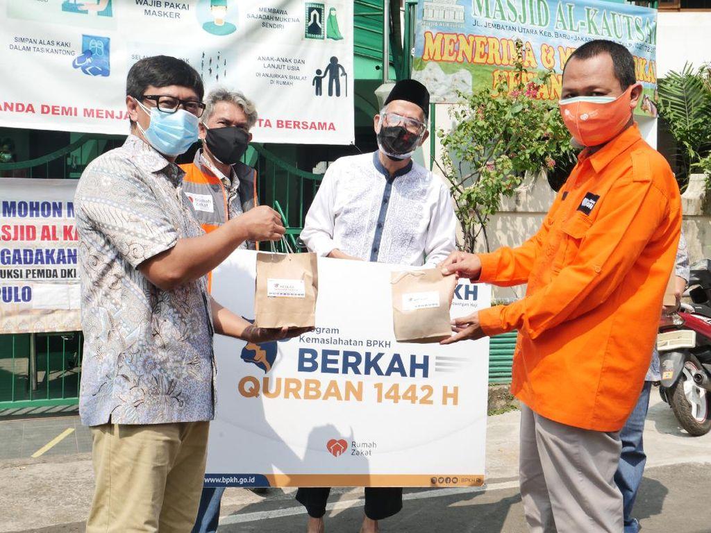BPKH Salurkan 1.000 Ekor Sapi Kurban hingga Pelosok Negeri
