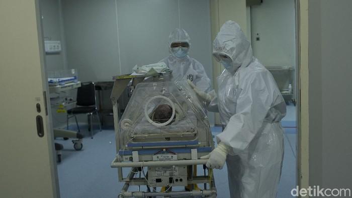 警告! インドネシア医師会タスクフォースはCOVID-19が農村地域に忍び込む COVID-19 | パンデミック