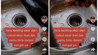 Cara Bersihkan Ikan Tongkol Ini Hindarkan Rasa Gatal Usai Mengonsumsinya