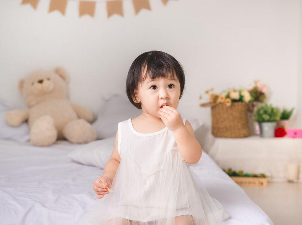Si Kecil Doyan Ngemil? Ini 5 Rekomendasi Camilan Favorit untuk Si Kecil