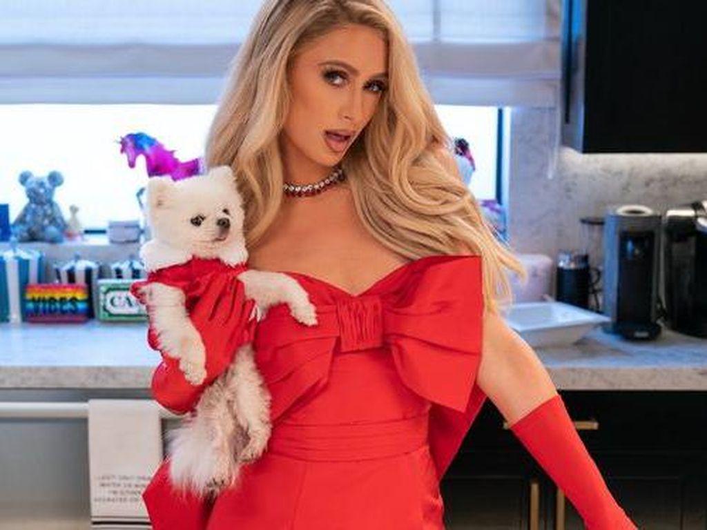 Paris Hilton Ajak Kamu Masak-masak Seksi di Cooking with Paris