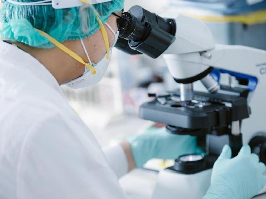 Mengenal Neurogenomics untuk Minimalisir Risiko Gangguan Saraf