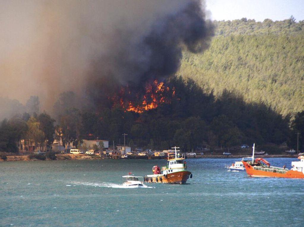6 Petugas Gugur saat Atasi Kebakaran Hutan di Turki