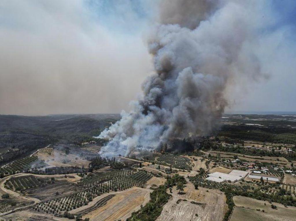 Kebakaran Turki, Turis Resor Dievakuasi Perahu Penyelamat