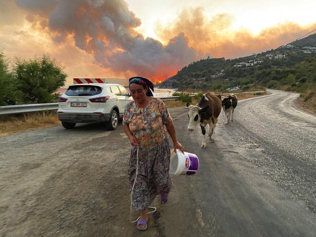 Potret Warga Turki Ramai-ramai Mengungsi Gegara Kebakaran Hutan