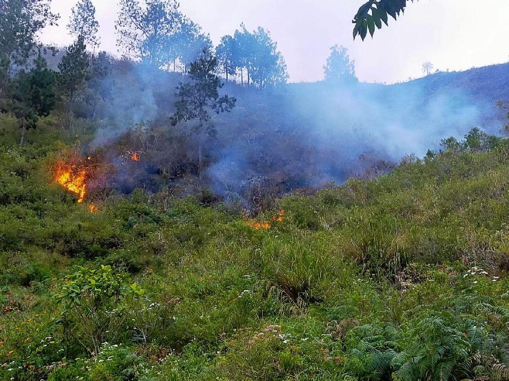 Kebakaran Hutan di Sekitar Danau Toba Meluas