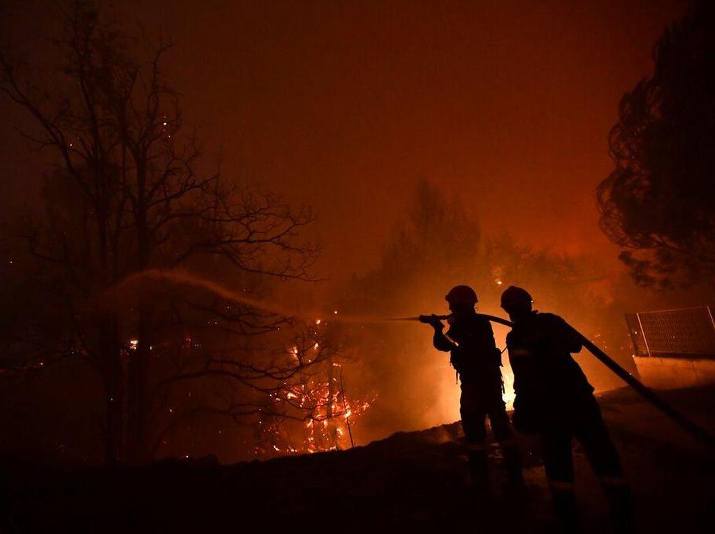 Kebakaran Hutan di Yunani, Warga Dievakuasi Pakai Kapal Feri