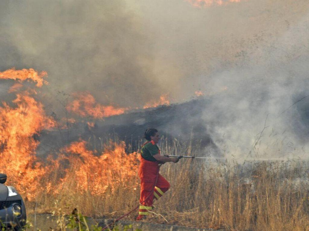 Kebakaran Italia Berkobar, Suhu Nyaris 50 Derajat Celcius