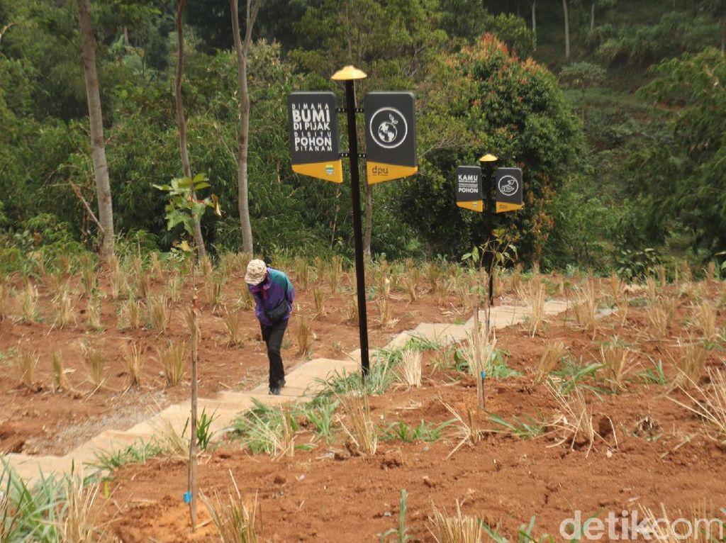 Lembah Tangga 100, Tempat Cari Oksigen Segar Melimpah di Bandung