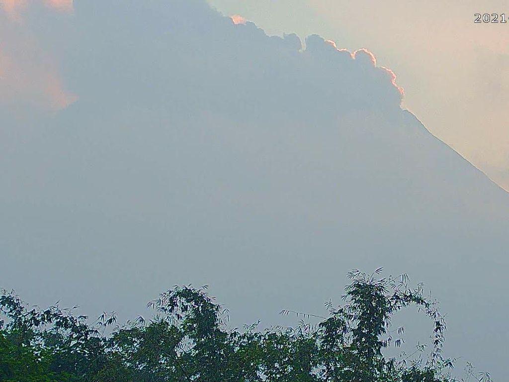 Gunung Merapi Erupsi Pagi Ini! Awan Panas Meluncur 3,5 Kilometer