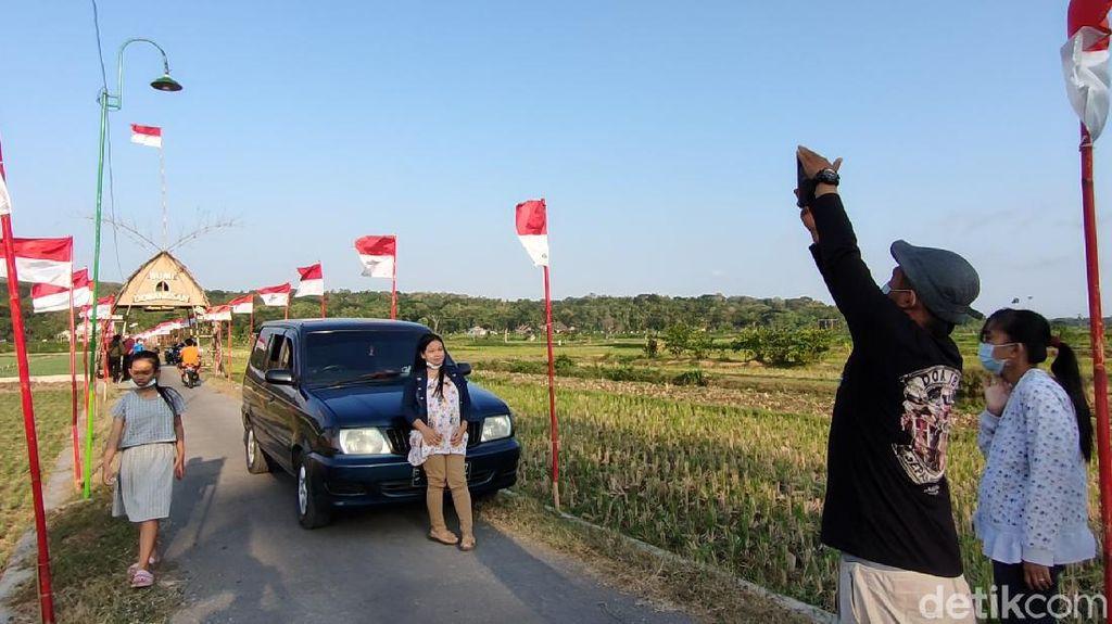 Foto: Sawah Kulon Progo dengan 1.000 Bendera Merah Putih