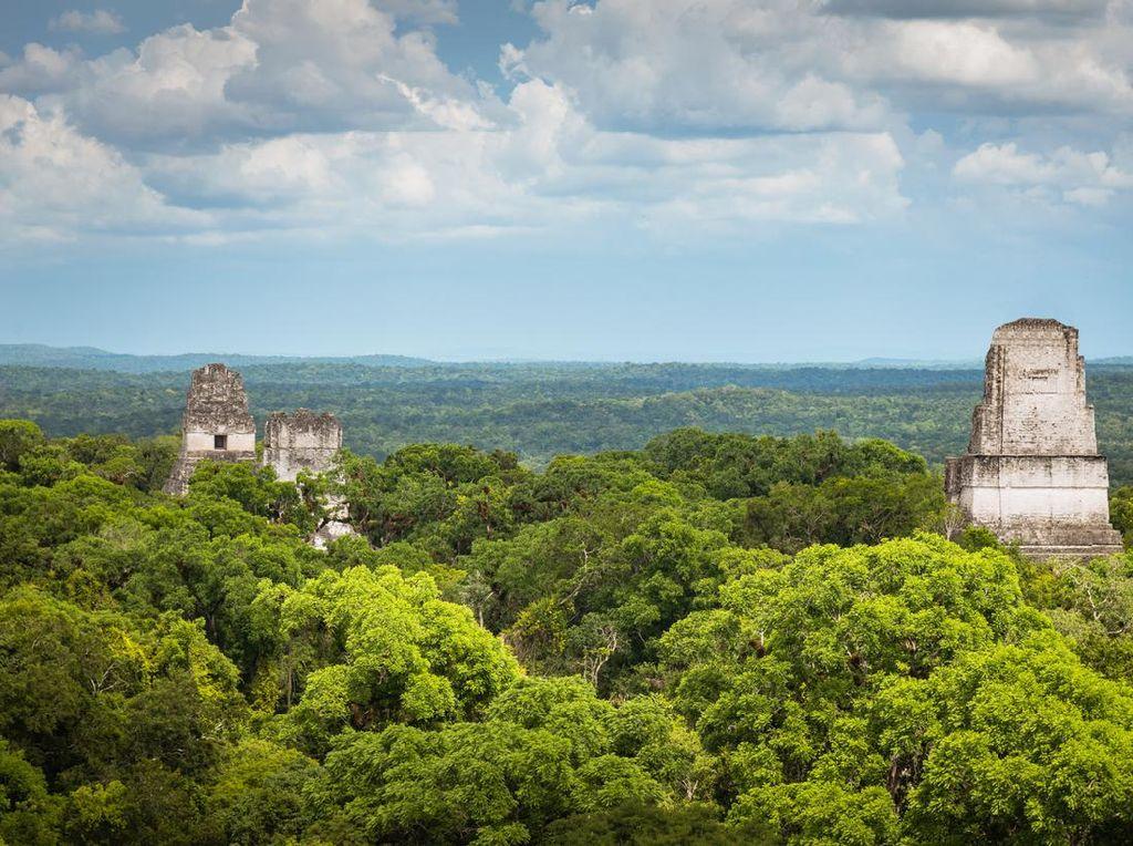 Potret Tikal, Kota Maya yang Paling Canggih Teknologinya