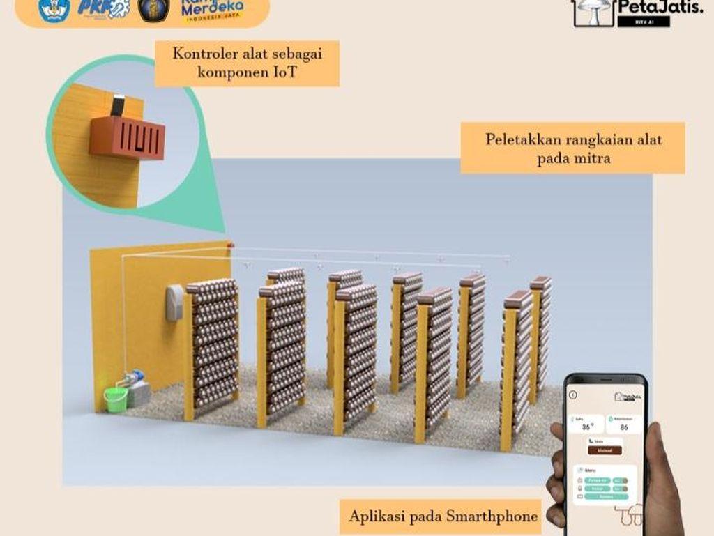 Top! Mahasiswa UB Ciptakan Teknologi Produksi Jamur Tiram dengan Smartphone