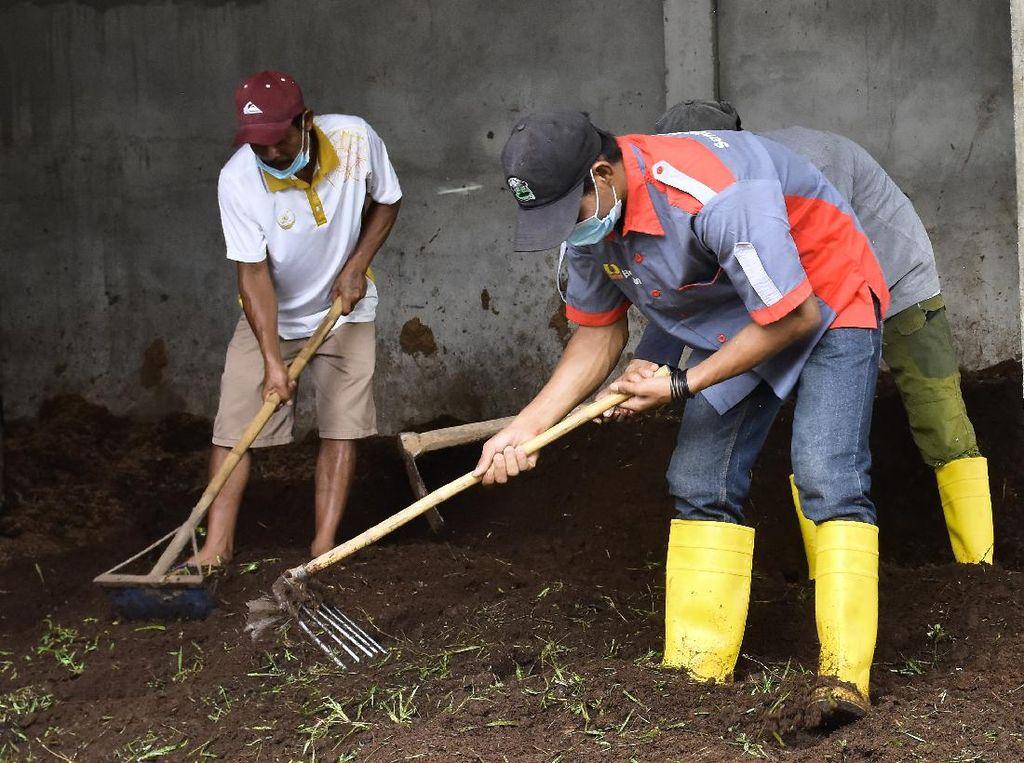 Kisah Pengusaha Pupuk Banjir Rezeki Sejak Tinggalkan Tambang Ilegal