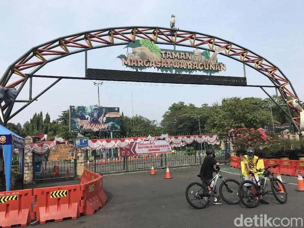 Taman Marga Satwa Ragunan Segera Dibuka Bertahap Saat PPKM