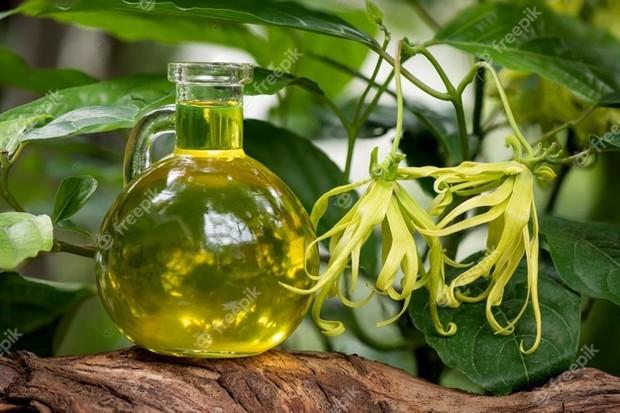 Bunga kenanga bahan alami untuk mencerahkan kulit/Foto: freepik.com