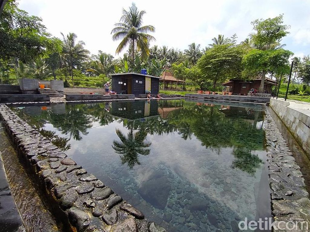 Foto: Pemandian View Sawah untuk Liburanmu