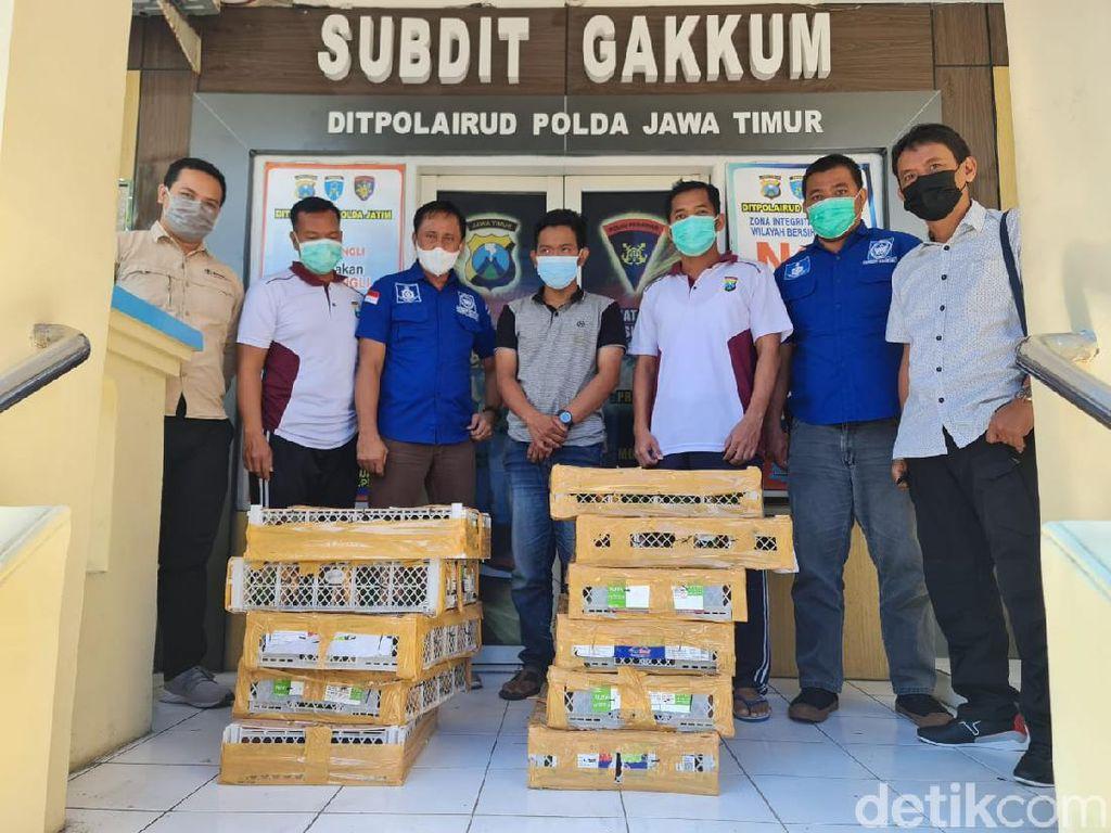 Polisi Gagalkan Pengiriman Satwa Dilindungi dari Balikpapan ke Surabaya