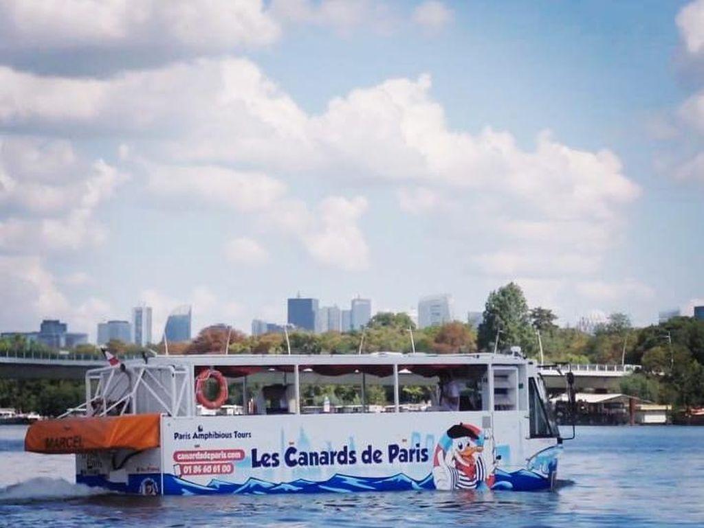 Bebek Paris, Bisa Jalan-Jalan di Kota dan Mengapung di Air