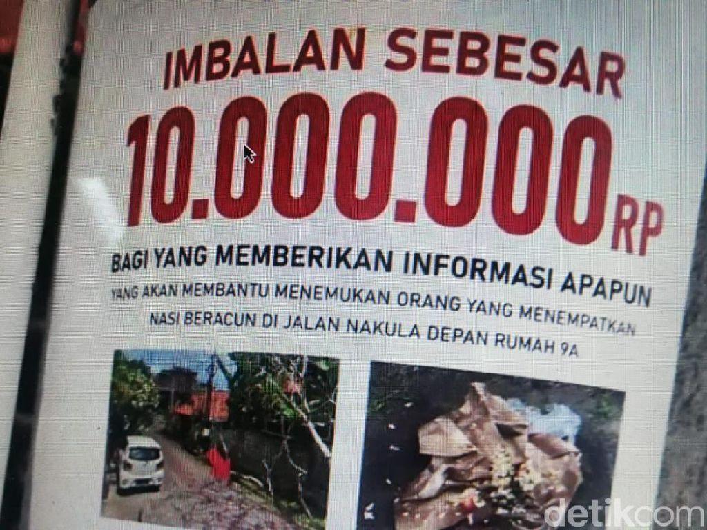 Viral 3 Anjing di Bali Mati Diracun, Pemilik Bikin Sayembara Rp 10 Juta