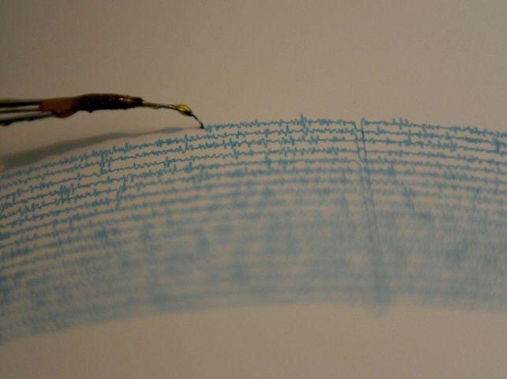 4 Gempa Terkini di Indonesia, Berikut Informasinya