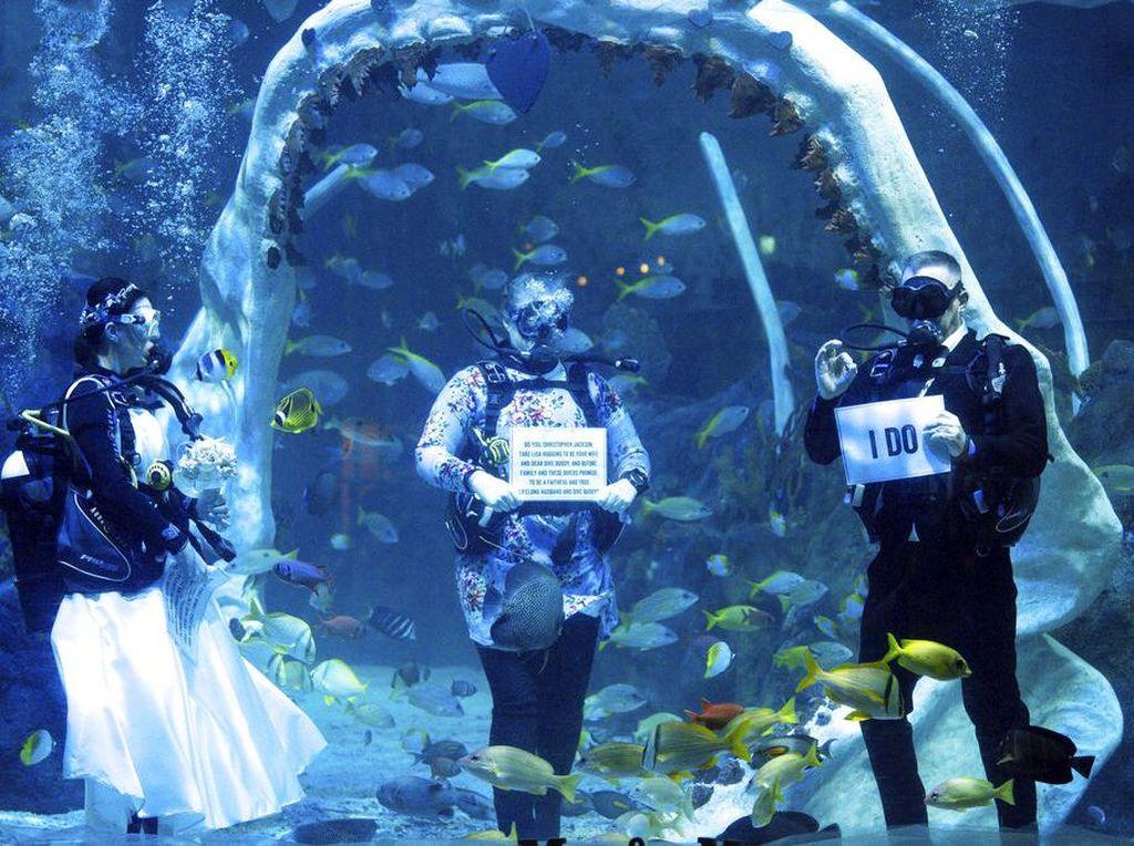 Serunya Menikah di Dalam Air