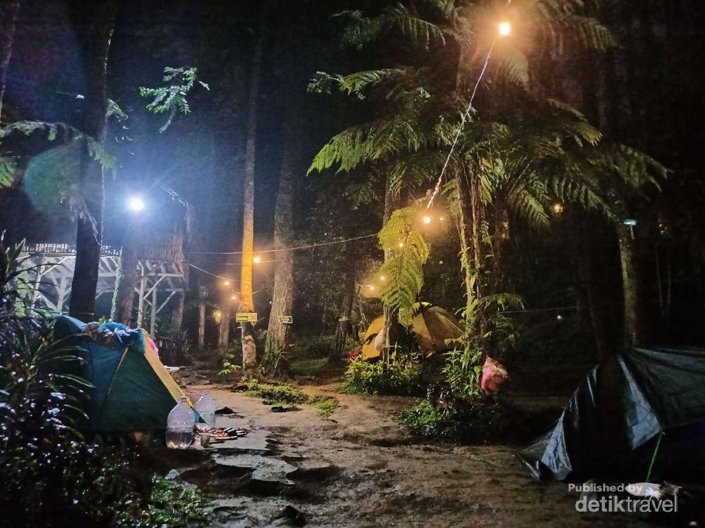 Rekomendasi Kemping Ceria di Hutan Pinus Bogor, Cobalah ke Curug Batu Gede Puncak