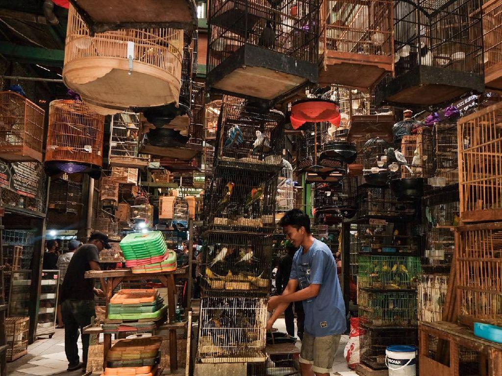 Jenis-jenis Pasar: Pengertian Pasar Regional, Lokal, Internasional, dan Lainnya