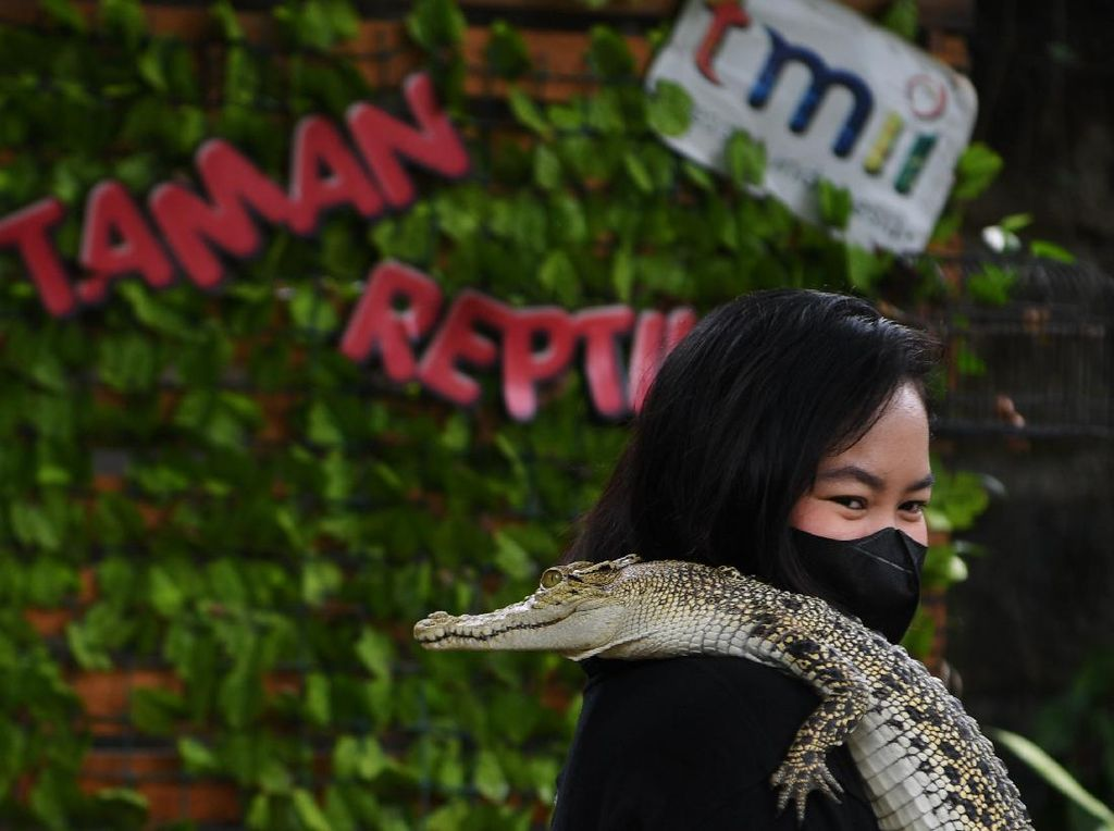 Jakarta PPKM Level 3, Dua Wahana di TMII Ini Kembali Dibuka