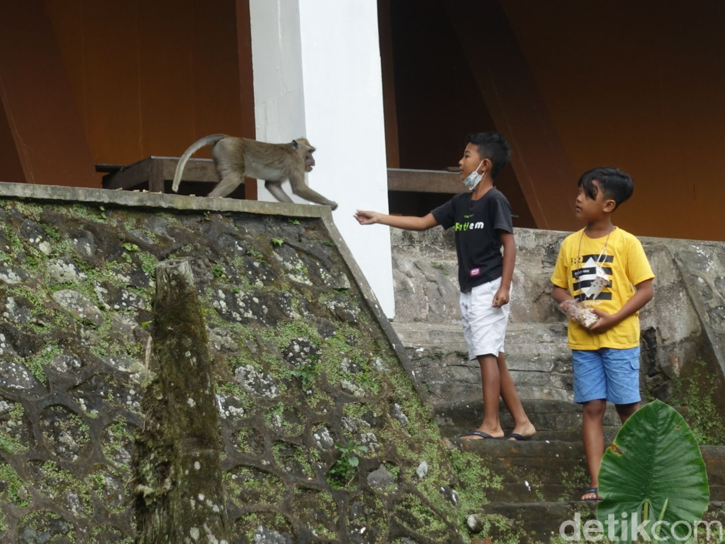 Kaliurang area is invaded by tourists
