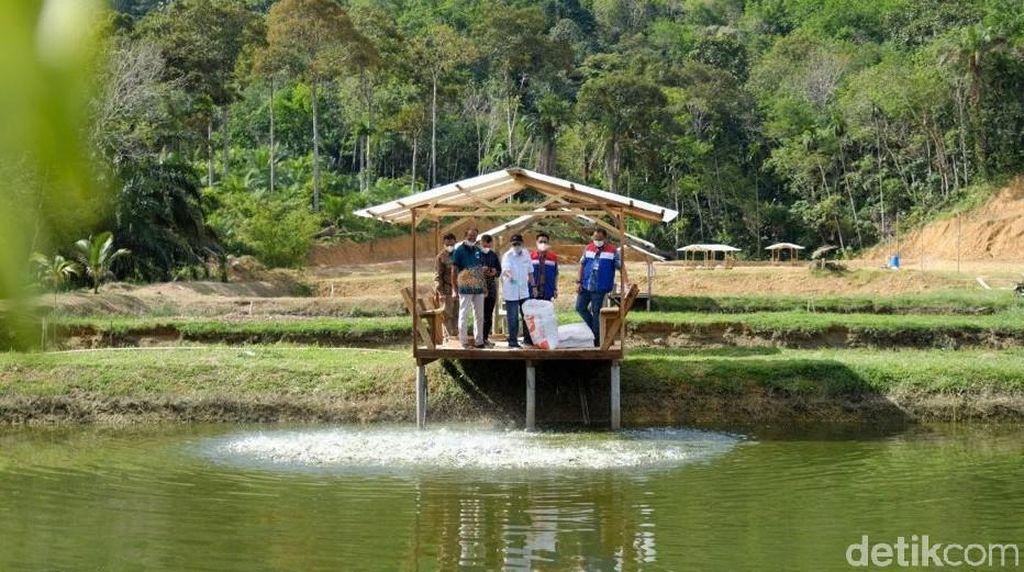 Menengok Kampung Patin yang Dikunjungi Sandiaga Uno di Riau