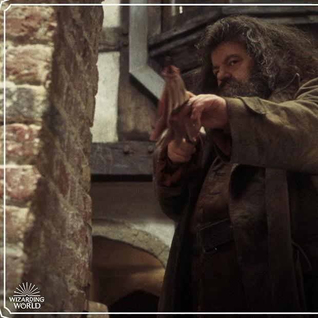 zodiak Hagrid