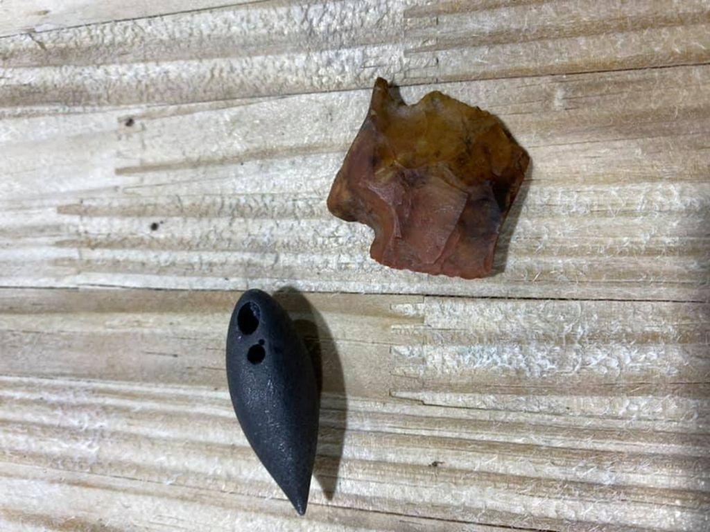 Wow! Artefak Berusia 6.000 Tahun Ditemukan di Dalam Perut Buaya