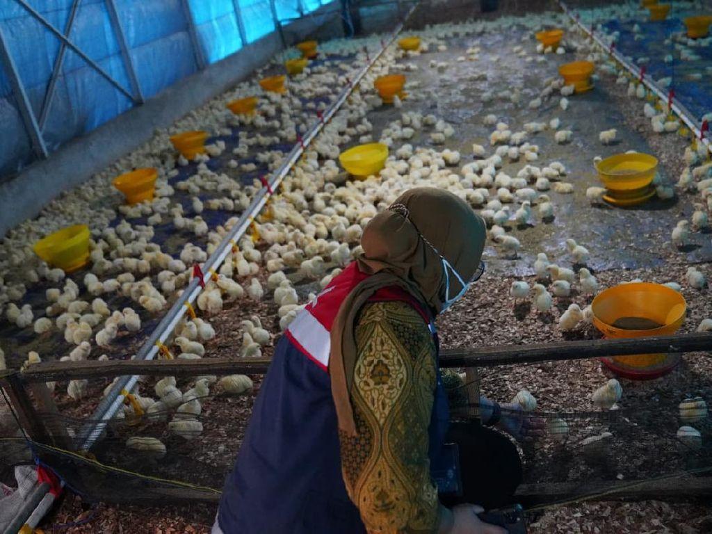Hutama Karya Beri Bantuan Total Rp 250 Juta ke Pesantren di Riau