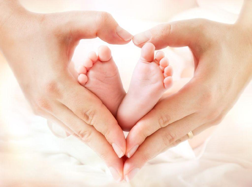 Bayi Hidup dalam Kardus Ditemukan Warga di Bantul