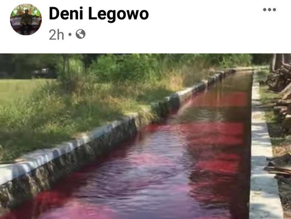 Heboh Air Saluran Irigasi di Klaten Merah Darah, Pemkab Klaten Akan Cek