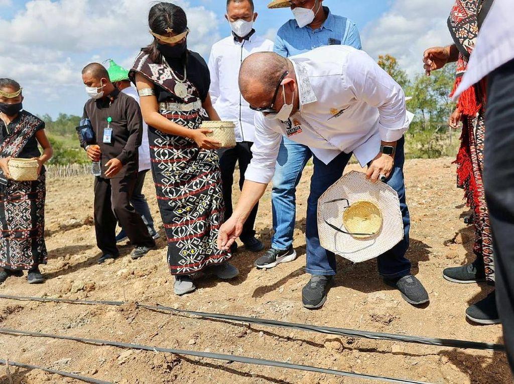 Ketua DPD RI Ingatkan Impor Bukan Solusi untuk Tekan Harga Jagung