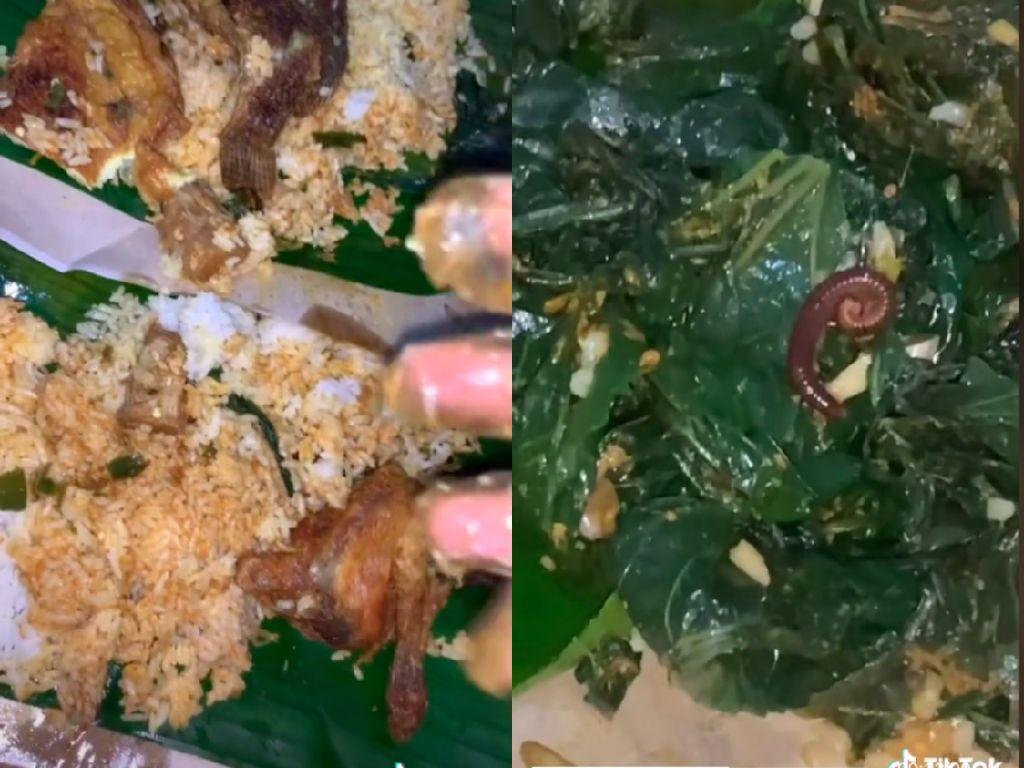 Hiii! Wanita Ini Temukan Kaki Seribu di dalam Bungkus Nasi Padang