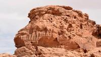 Foto Pahatan Unta Tertua Dunia, Usianya 8.000 Tahun!