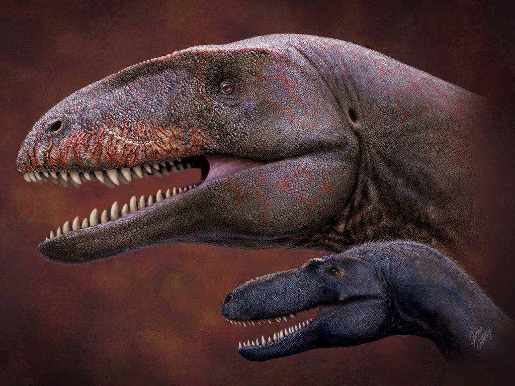 Dinosaurus Monster Ini Bikin Tyrannosaurus Rex Bak Remahan Peyek