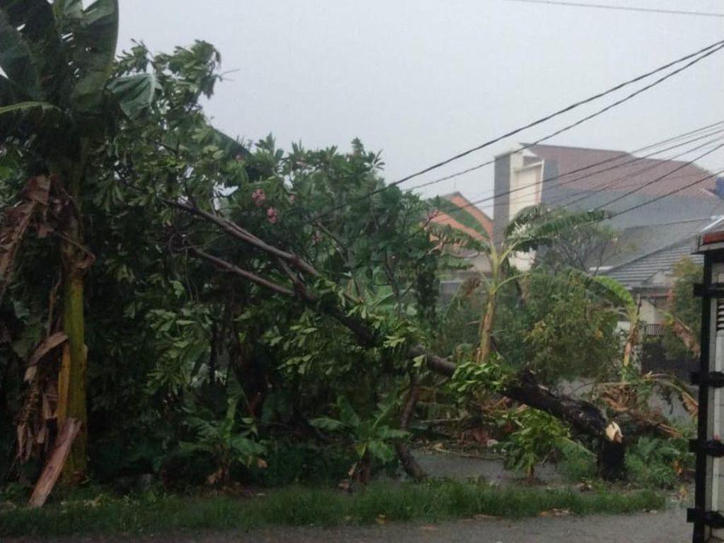 Analisis BMKG soal Puting Beliung-Hujan Es di Depok