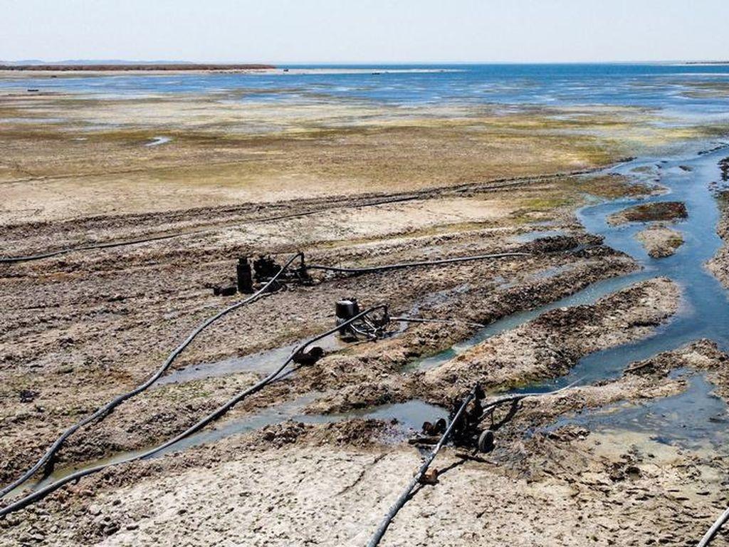 Bagaimana Sengketa Air Picu Bencana Kekeringan di Sungai Eufrat?