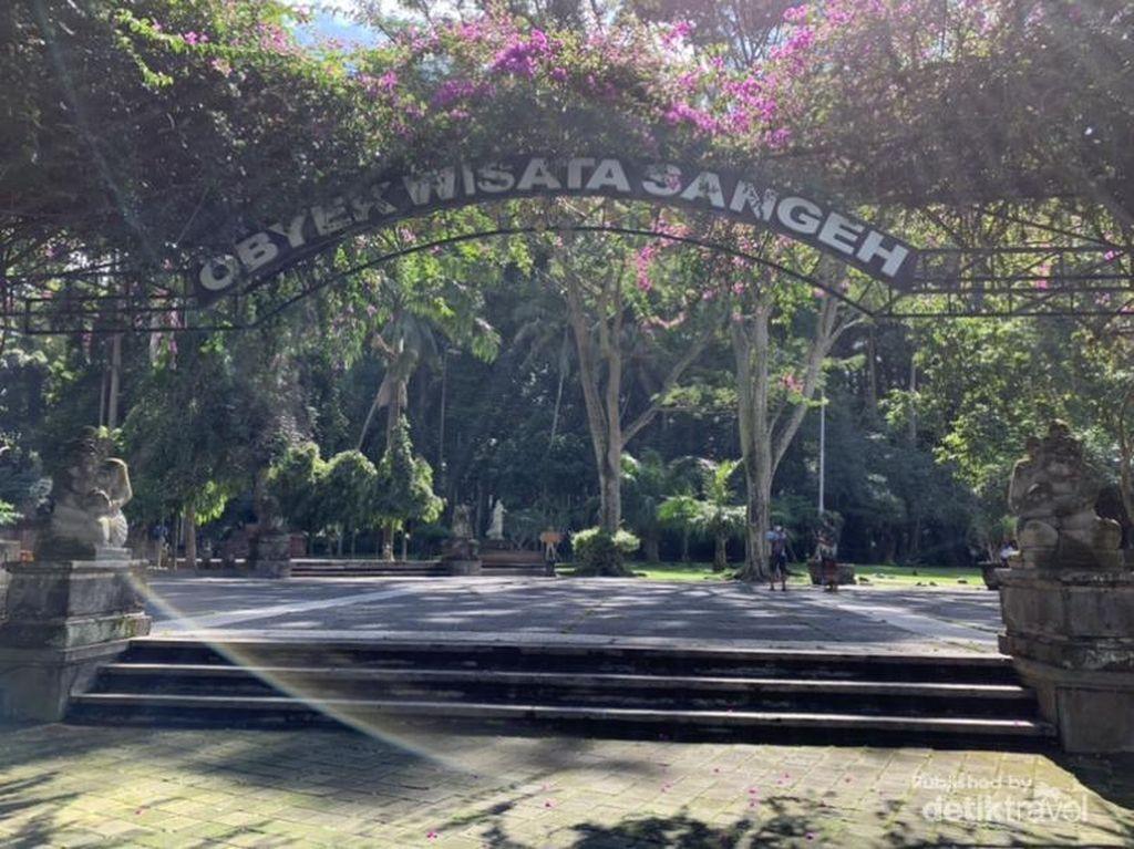 Melihat Kampung Kera di Bali, Gemoy!