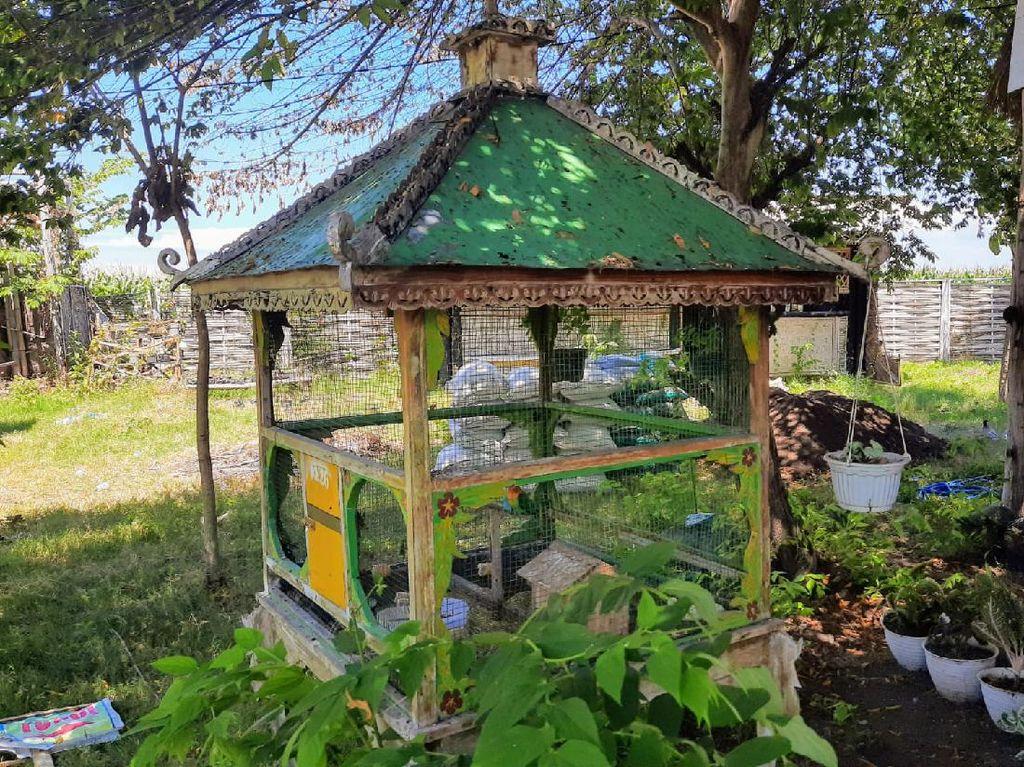Dusun BerKK-26 di Situbondo Ini Mulai Dilirik Wisatawan Mancanegara