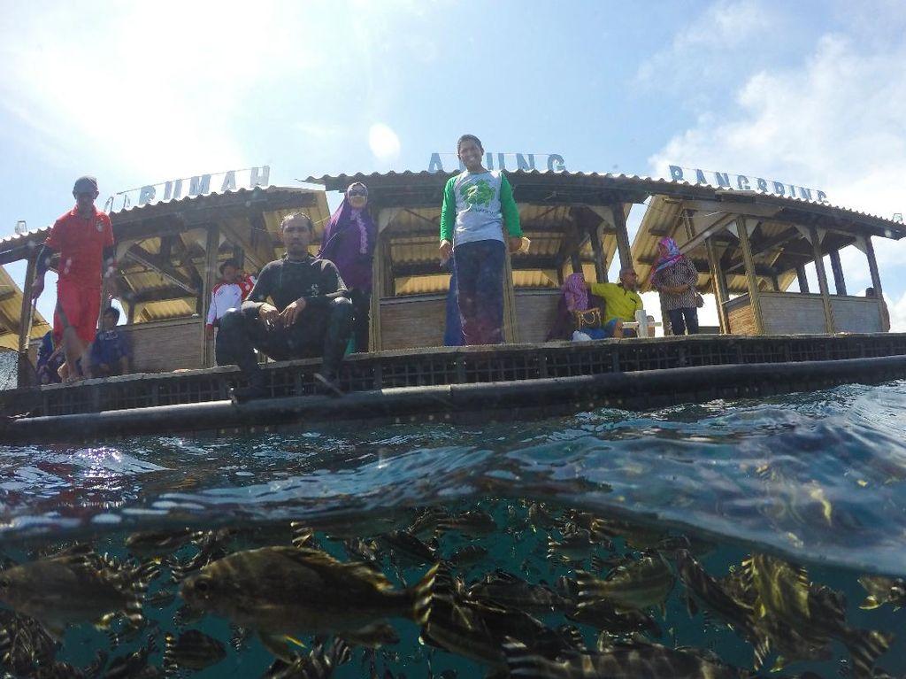 Destinasi Wisata Mulai Buka, Banyuwangi Luncurkan Angkutan Pariwisata Gratis
