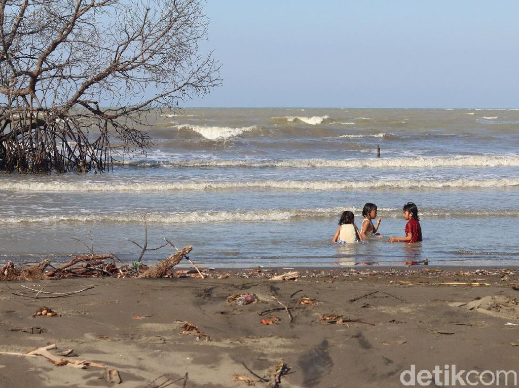 Pantai Muara Beting Bekasi yang Terancam Hilang
